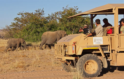 Game drive at Twyfelfontein